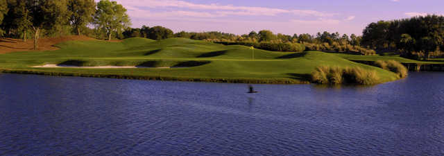 Grand Cypress Resort - East