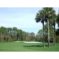 Disney's Palm Course features countless palm trees, some of which guard doglegs on par 4s.