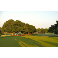 The sixth hole at Mission Inn's El Campeon golf course is one of many that have an elevated green.