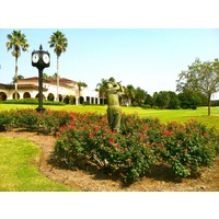 The landscaping at Mission Inn Resort & Club is part of its aesthetic appeal.